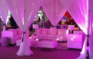 Event Rentals - Chair Furniture - Delray Beach, FL