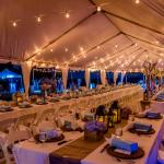 bistro-lights-below-tent