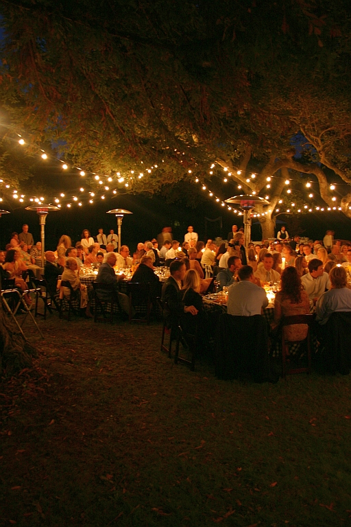 Edison Bulb Cafe Bistro Lighting Grimes Events Amp Party Tents